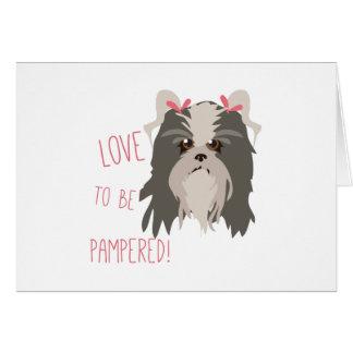 Pampered Pet Greeting Card