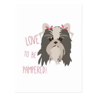 Pampered Pet Postcard