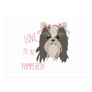 Pampered Pet Post Card