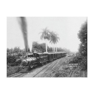 Pan American Central Railroad in Guatemala Canvas Print