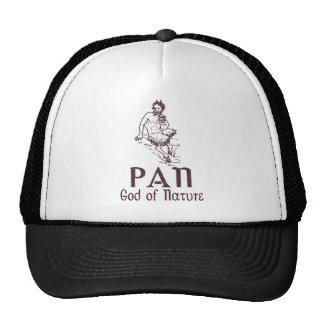 Pan Trucker Hat