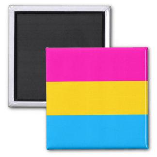 Pan pride flag magnet