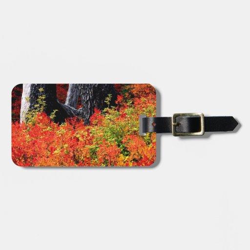 Panadero del soporte del otoño etiquetas bolsa