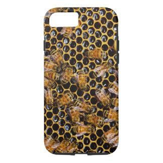 Panal y abejas funda iPhone 7