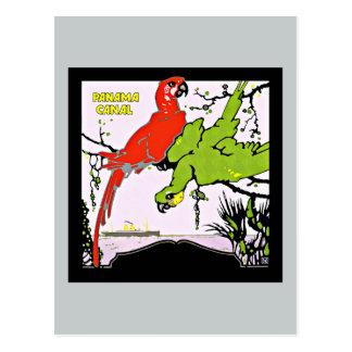 Panama Canal Macaws Vintage Travel Postcard