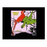 Panama Canal Parrots Postcard