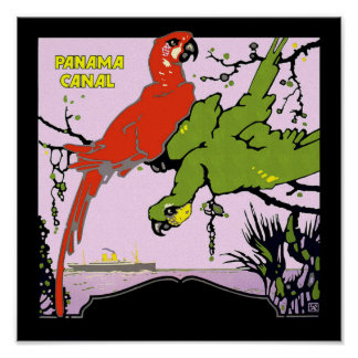 Panama Canal Parrots Poster