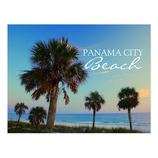 Panama City Beach, Florida Palm Trees Sunset Postcard