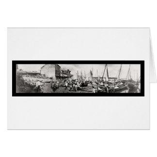 Panama City Waterfront Photo 1909 Card