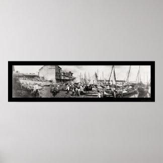 Panama City Waterfront Photo 1909 Poster