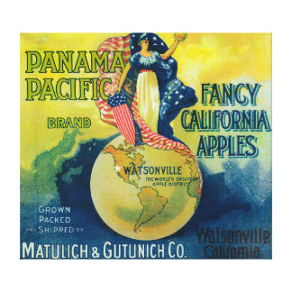 Panama Pacific Apple Crate Label Gallery Wrapped Canvas