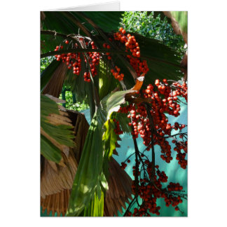 Panama Plants Greeting Card