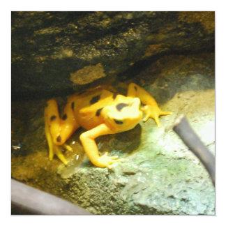 Panamanian Gold Frog Invitations