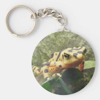 Panamanian Golden Frog Keychain