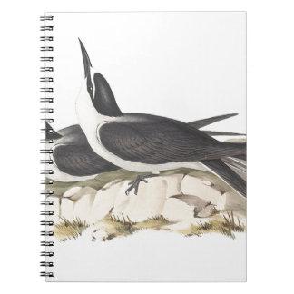PanayanTern Spiral Notebook