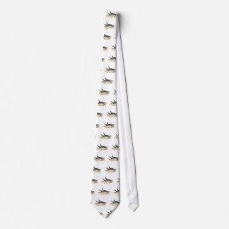 PanayanTern Tie