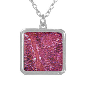 Pancreas Cells under the Microscope Silver Plated Necklace
