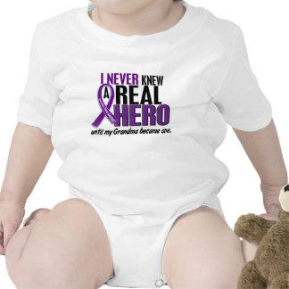 Pancreatic Cancer NEVER KNEW A HERO 2 Grandma T Shirts