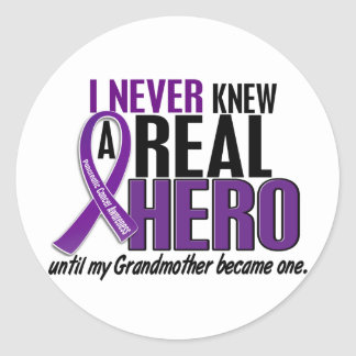 Pancreatic Cancer NEVER KNEW A HERO 2 Grandmother Classic Round Sticker