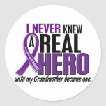 Pancreatic Cancer NEVER KNEW A HERO 2 Grandmother Round Stickers