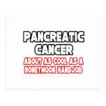Pancreatic Cancer...Not Cool Postcard