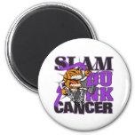 Pancreatic Cancer - Slam Dunk Cancer Magnets