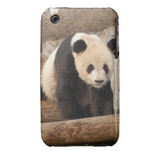 panda100 iPhone 3 cases