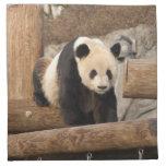 panda100 cloth napkins