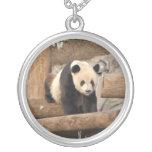panda100 joyeria