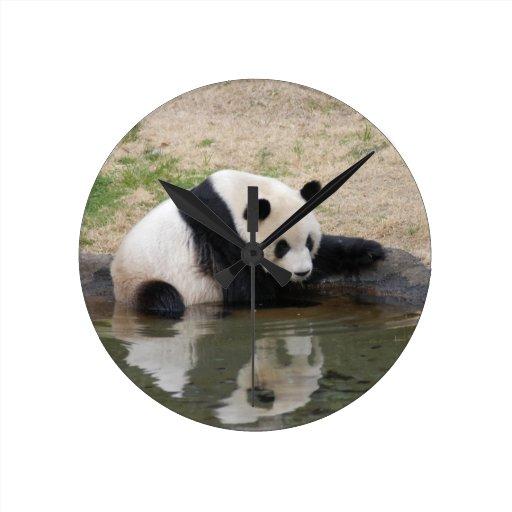 panda104 reloj