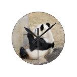 panda105 reloj