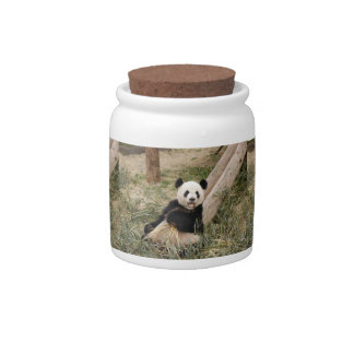 panda107 candy jar