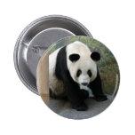 panda110 pin