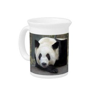 panda111 jarra