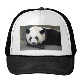 panda111 trucker hat