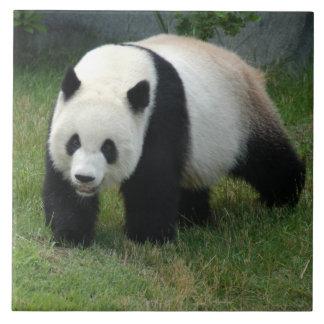 panda114 tile
