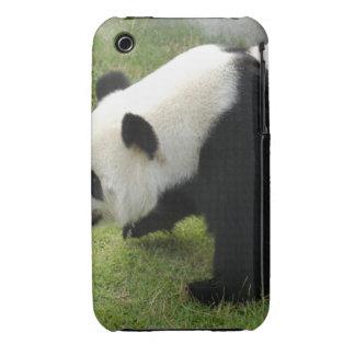 panda115 Case-Mate iPhone 3 case