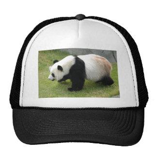 panda115 trucker hat