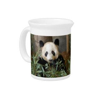 panda117 jarra