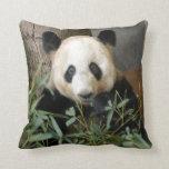 panda117 pillows