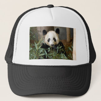 panda117 trucker hat
