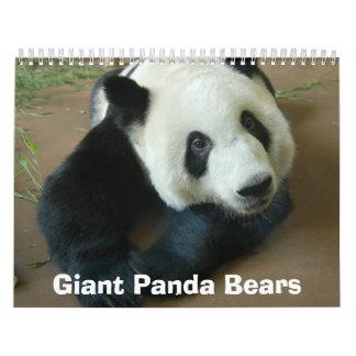 panda118 Giant Panda Bears Wall Calendar