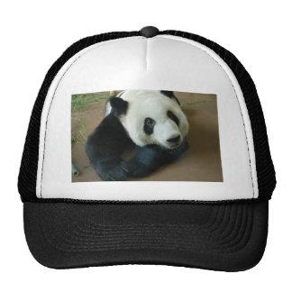 panda118 trucker hat