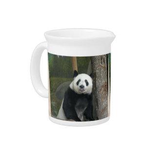 panda120 jarra de beber