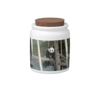 panda121 candy jar