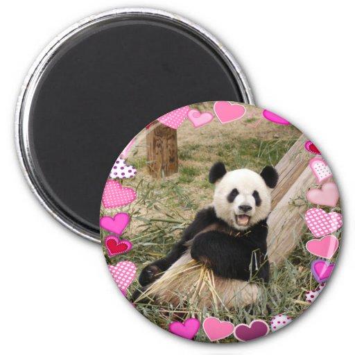 panda1-00030-85x85 imán redondo 5 cm