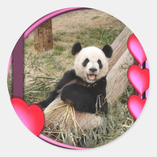 panda1-00098-85x85 classic round sticker
