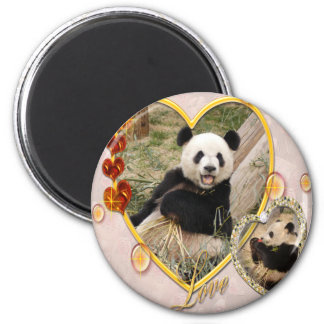 panda1-00354 2 inch round magnet