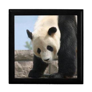 Panda20170506_by_JAMFoto Gift Box
