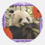 panda2-00001-85x85 etiqueta